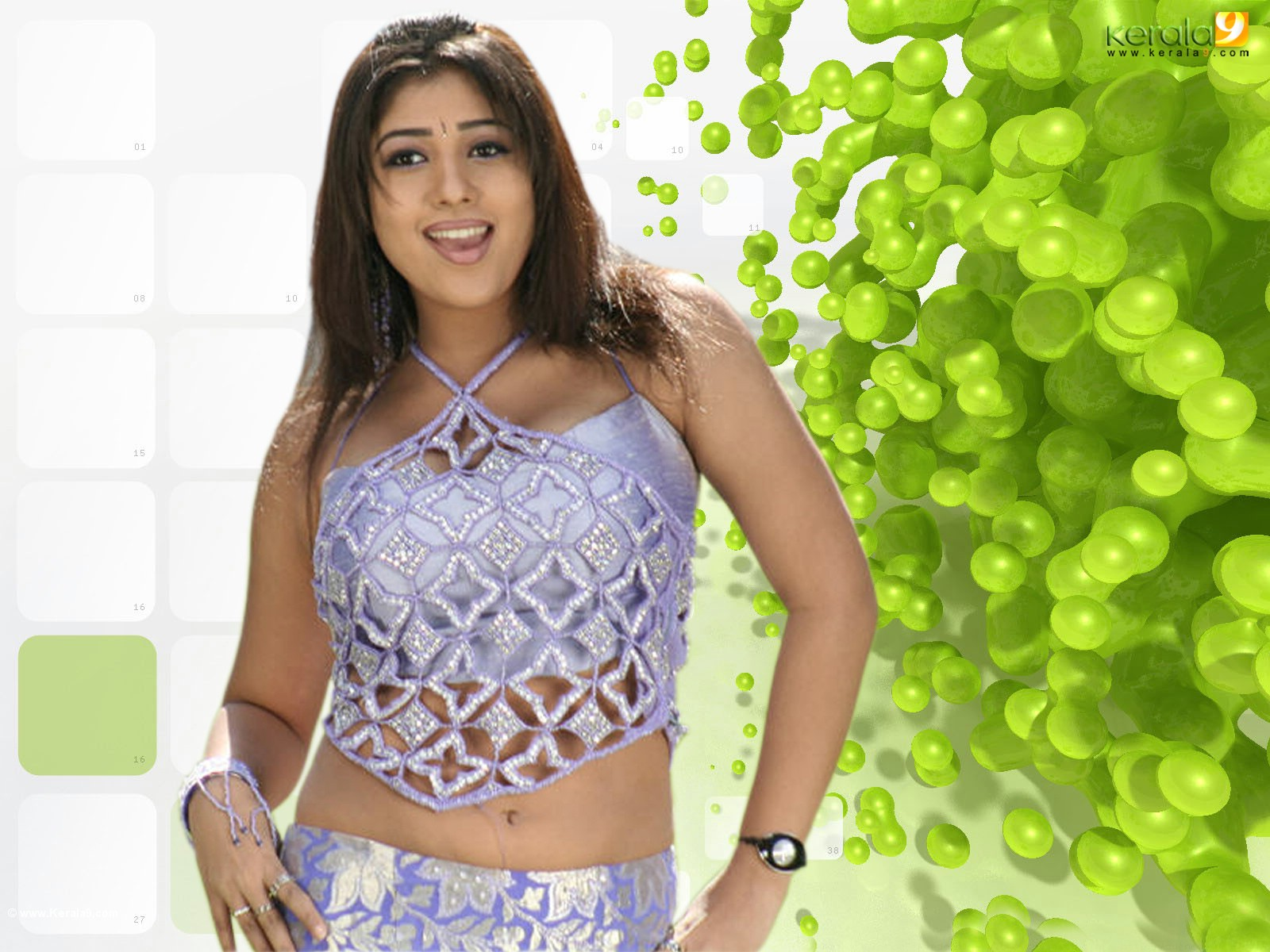 entertainment: nayanthara wallpapers 2011