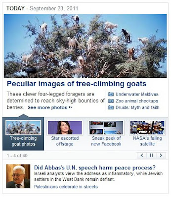 Yahoo and the goats in the trees