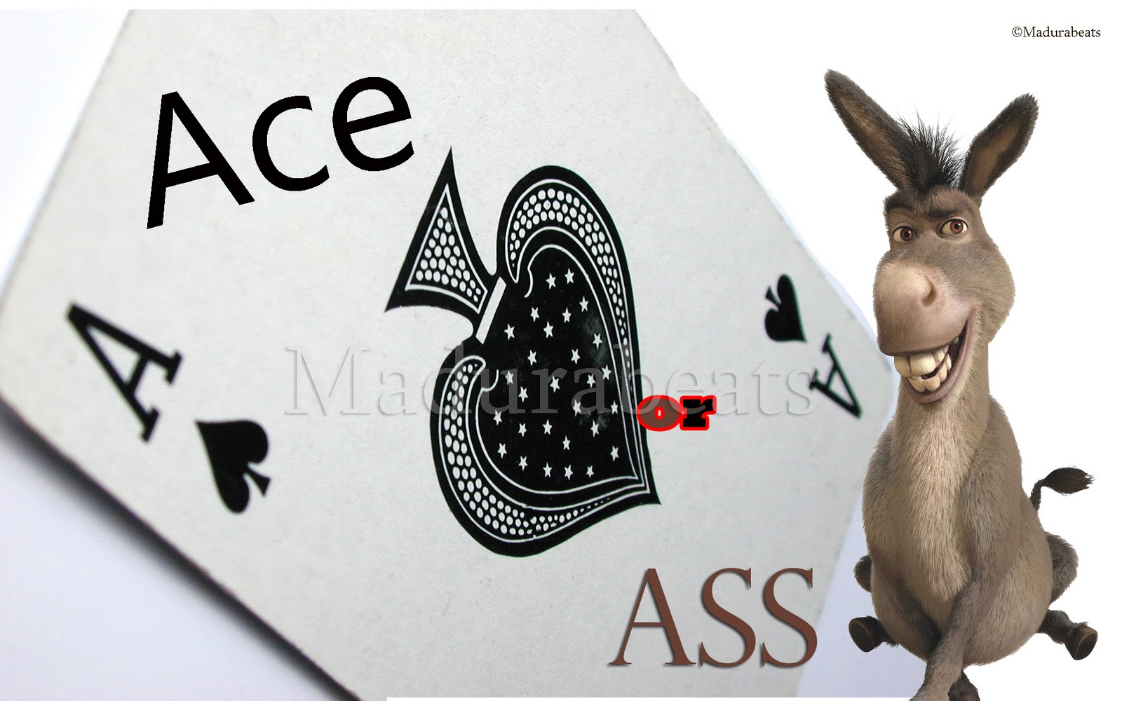 Ace or Ass - A confusion over the Ace game