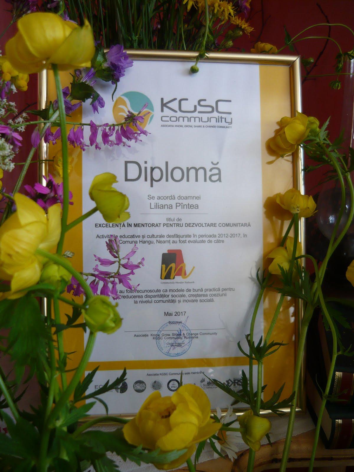 Diplomă de excelență
