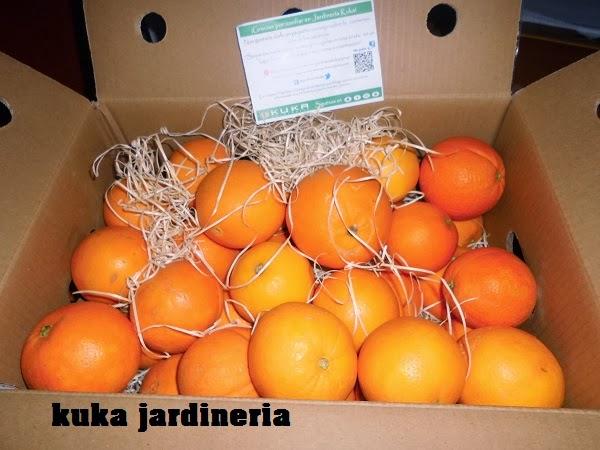caja de naranjas de jardinería kuka