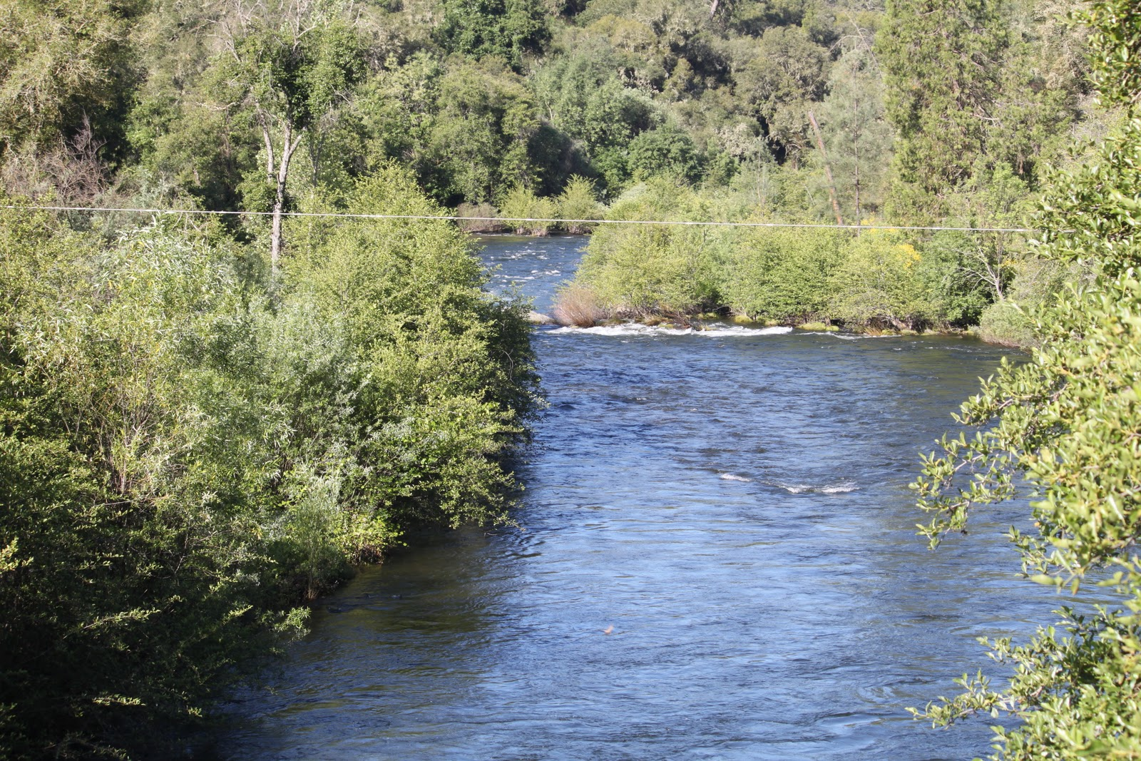 Heart of northern california for Mokelumne river fishing