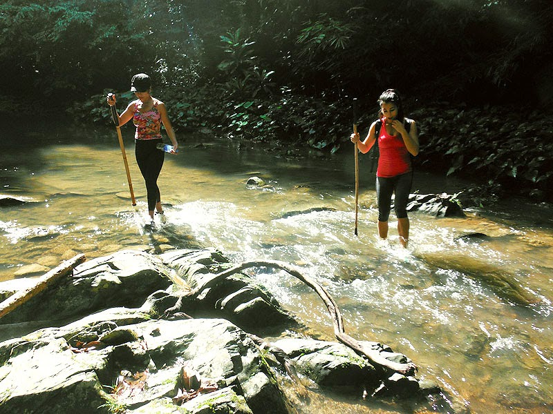 Phang Nga jungle trekking image