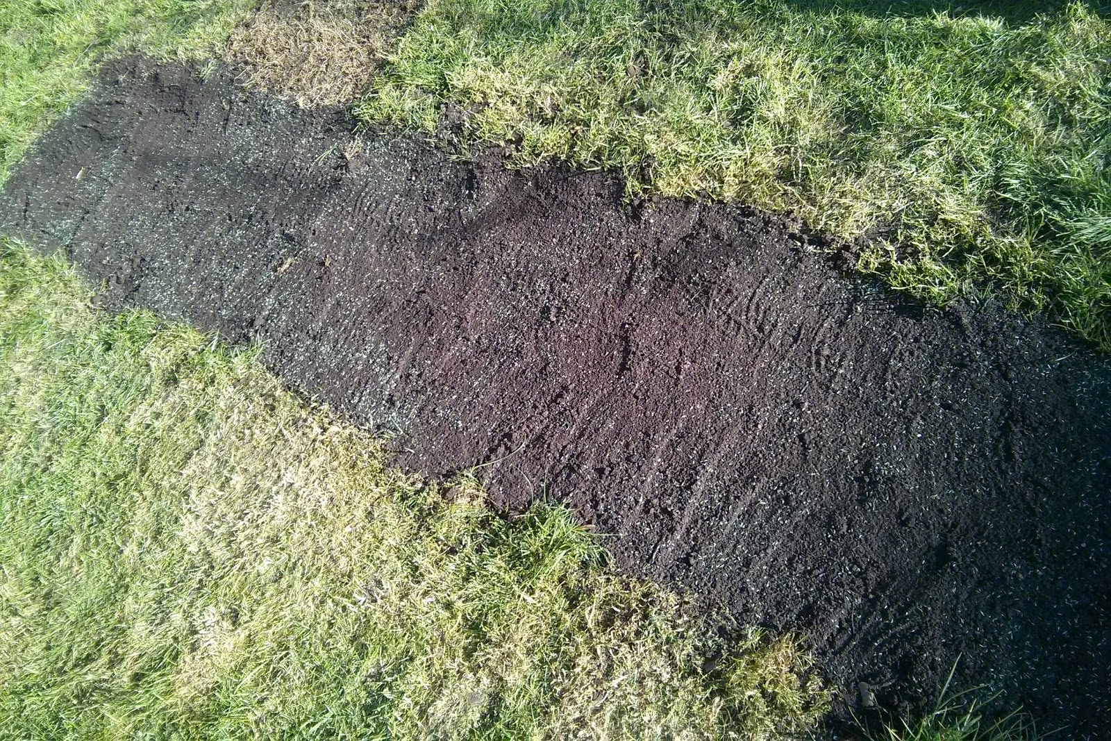 Mud Strip in Lawn