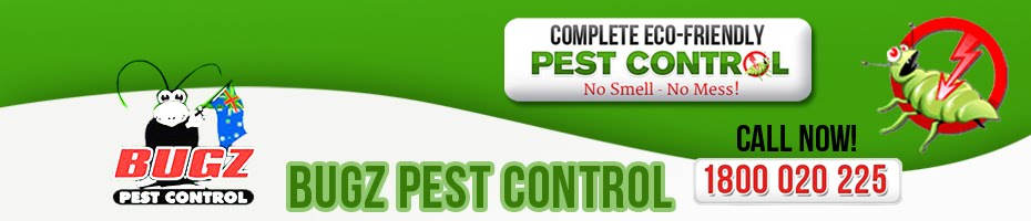Pest Control Sydney | Bugz Pest Control (02) 9522 2333