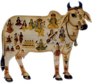 Uttarayan 2016