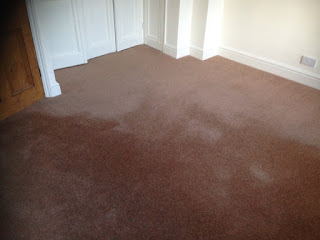 pile reversal on carpet, watermarks
