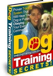 Get Dog Training Secrets Here!