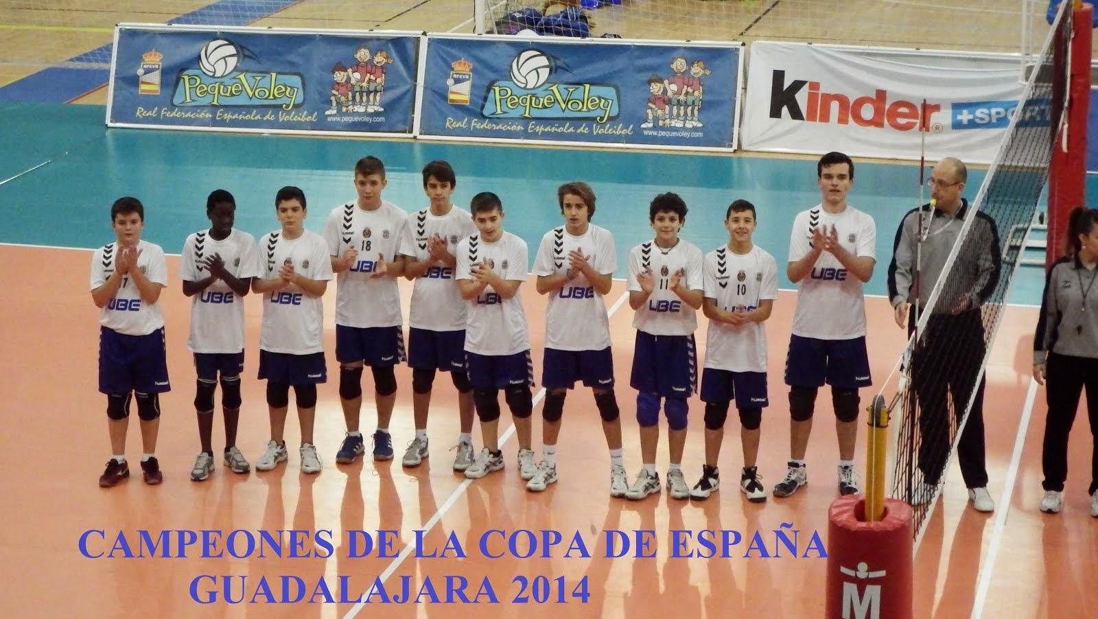 campeones copa españa 2014