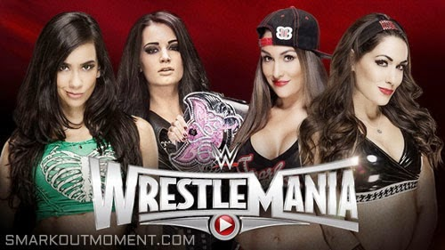 Nikki Brie Divas Championship Tag Team