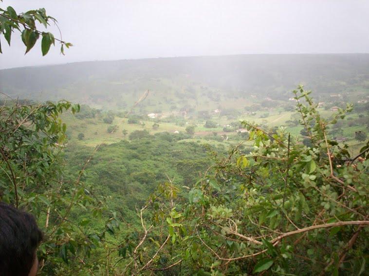 Vista do alto da mata do sítio Mata do Catimbau