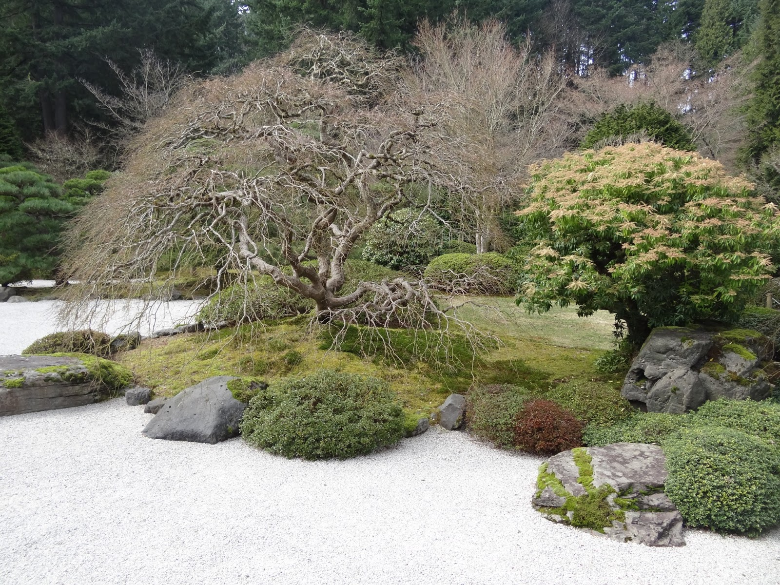 Worducopia Snapshots Portland Japanese Garden