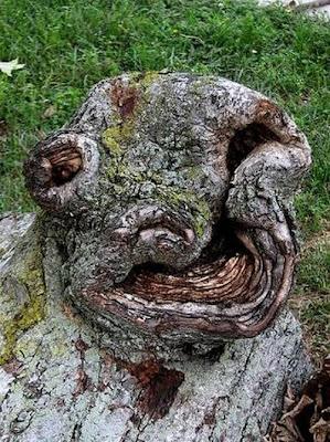 Funny trees