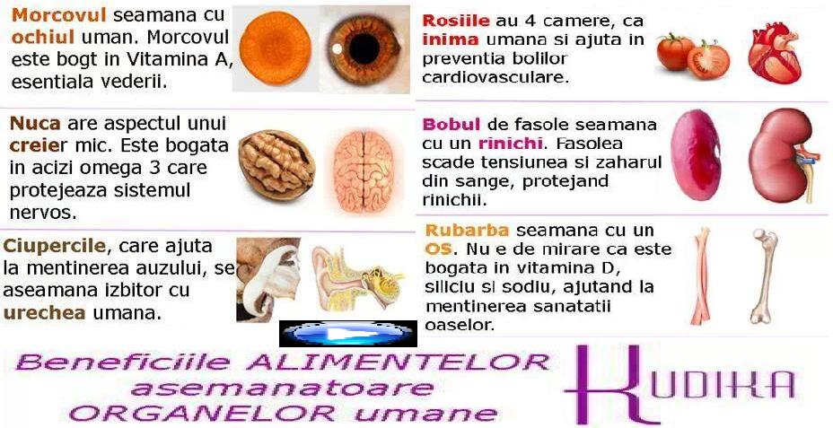 Medicina lui DUMNEZEU: ALIMENTELE corespunzatoare ORGANELOR