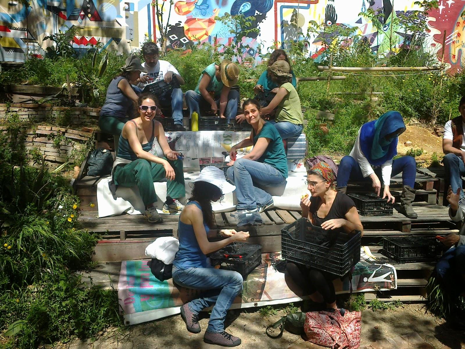 Esta es una plaza aprendiendo y construyendo un jard n for Historia de los jardines verticales