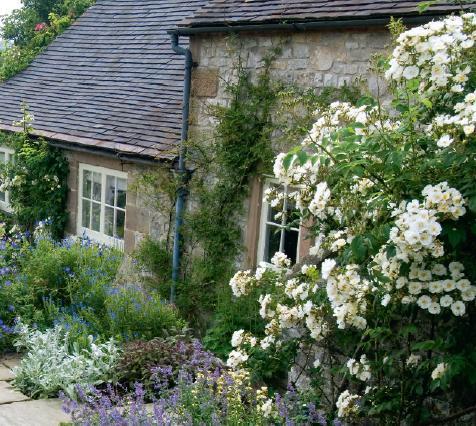 English garden in derbyshire english garden for Garden design derbyshire