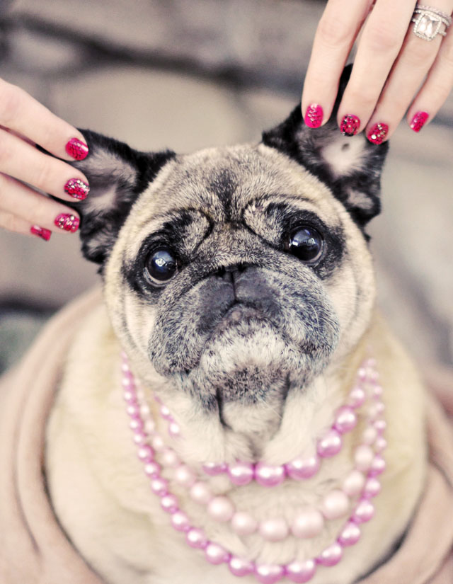 pug, nails, nail art, manicure, valentine's day nails