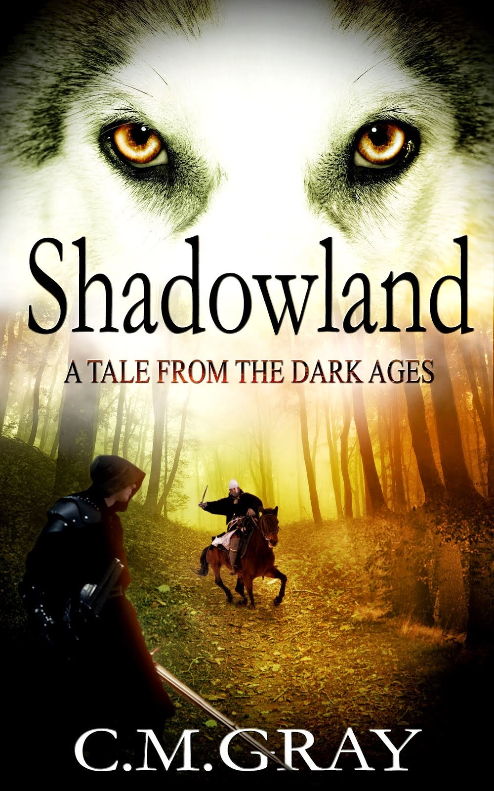 "Buy ""Shadowland"" on Amazon"