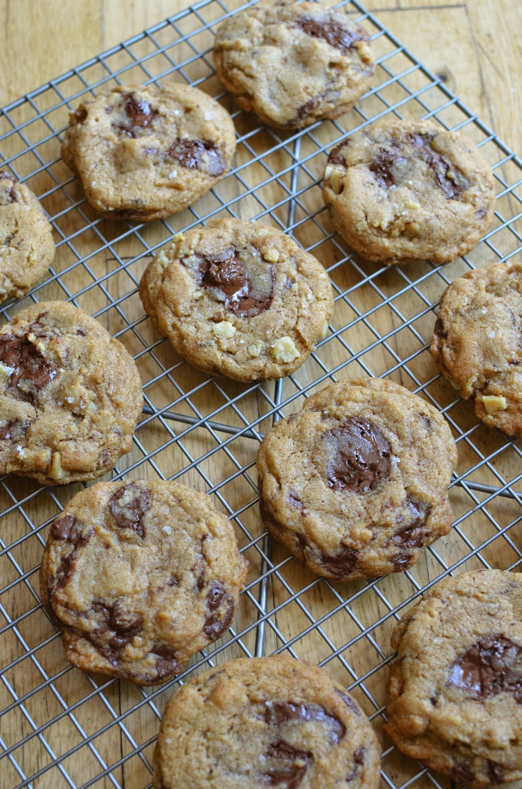Spelt chocolate chip cookie recipes