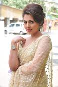 Madhu Shalini sizzling in saree-thumbnail-16