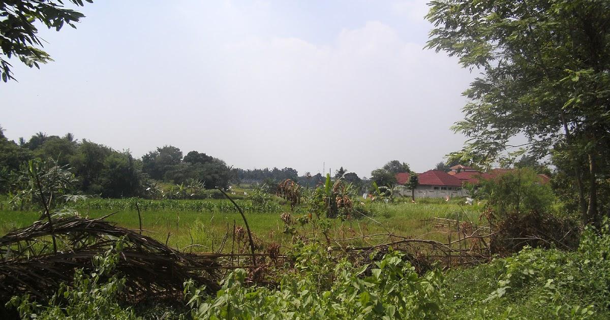 PROPERTY TANGERANG (Jual-Beli-Sewa Property di Tangerang): (001.THA ...