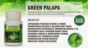 GREEN PALAPA HPAI