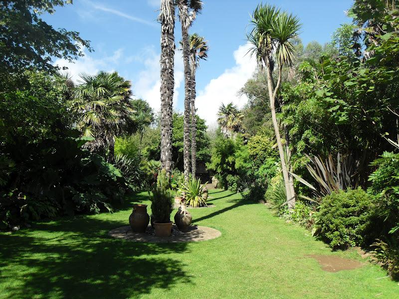 Abbotsbury Sub-tropical Garden