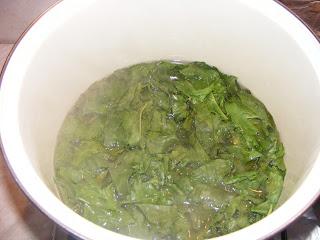 stevie oparita in apa fiarta, retete cu stevie, preparate din stevie, stevie oparita pentru gatit mancare,
