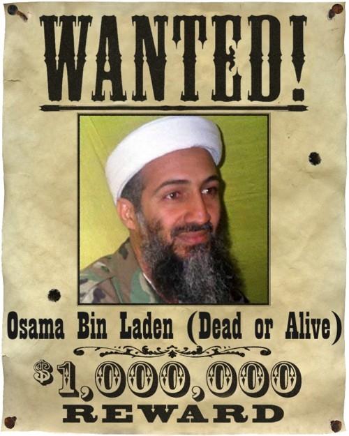 osama bin laden dead or alive. osama bin laden dead or alive.
