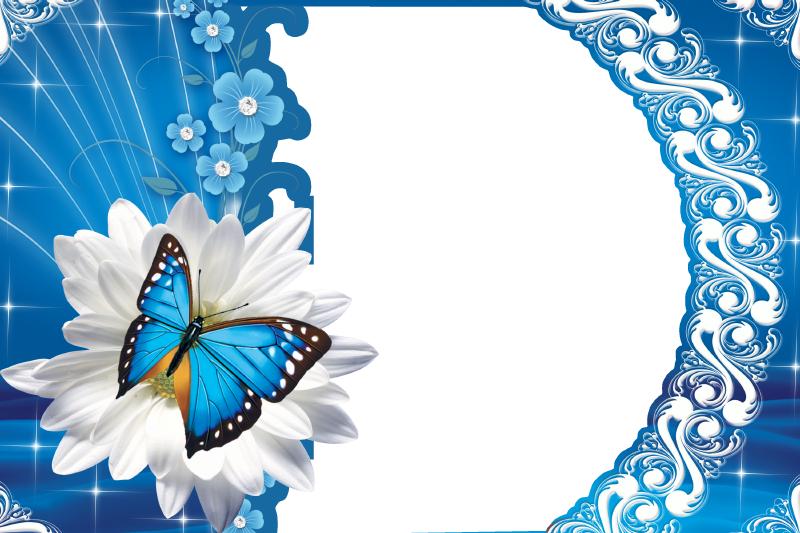Belas borboletas: Em Um Jardim de Flores Azuis