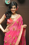 Adah Sharma Gorgeous in Pink Saree-thumbnail-14
