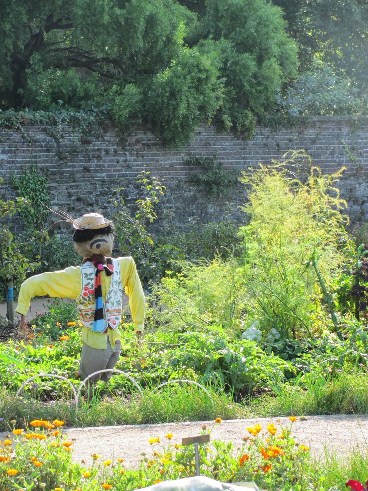 Kitchen Garden Scarecrow National Botanic Gardens Dublin
