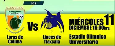Loros en la Final 2da División México
