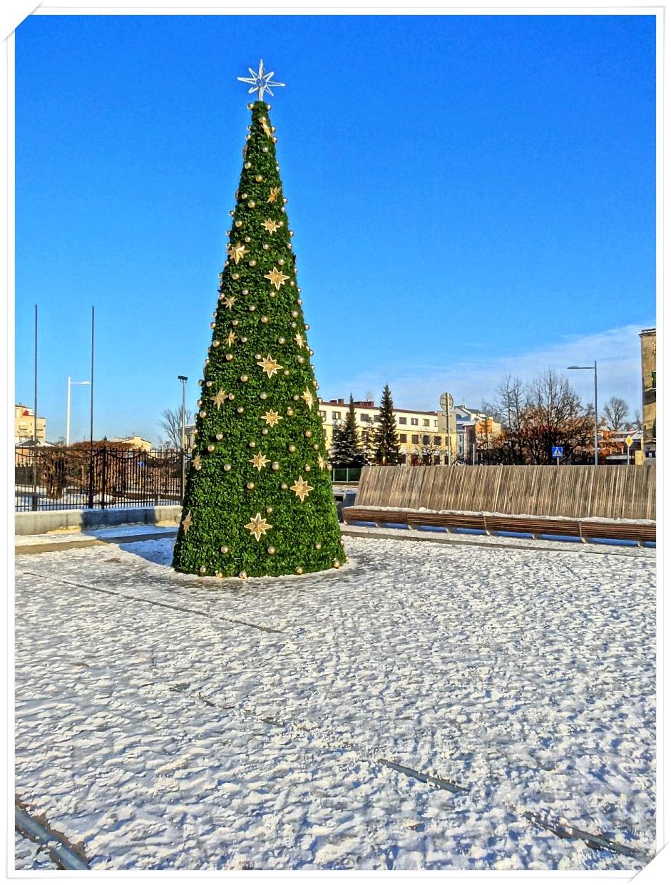 Choinka na placu Szembeka