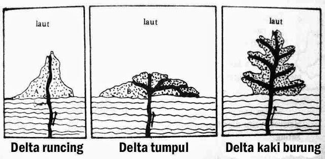 Macam-macam delta
