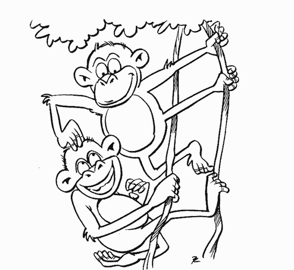 Cute zoo animals coloring pages for Zoo coloring pages printable