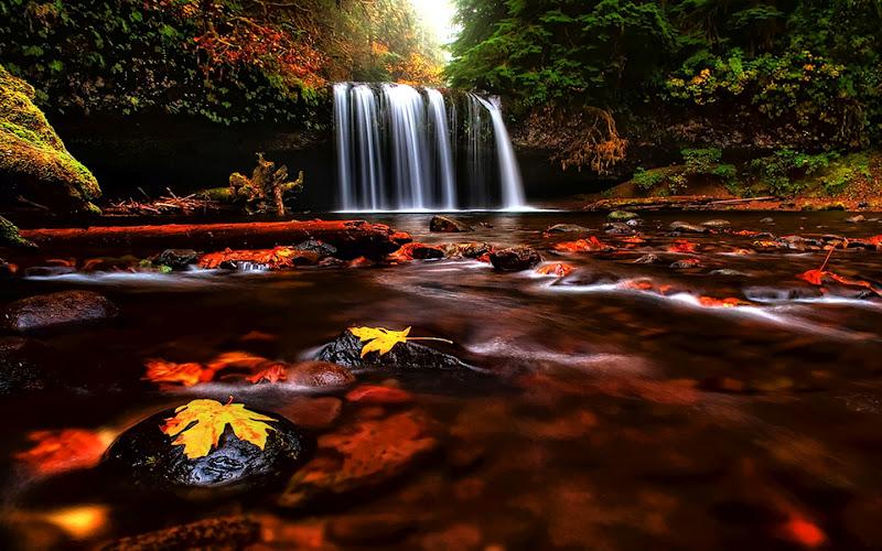 cascadas de agua relajante