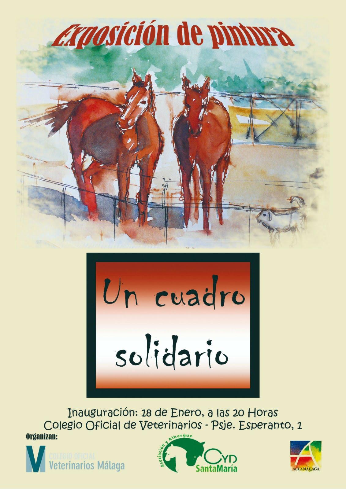 Solidaria refugio Caballos