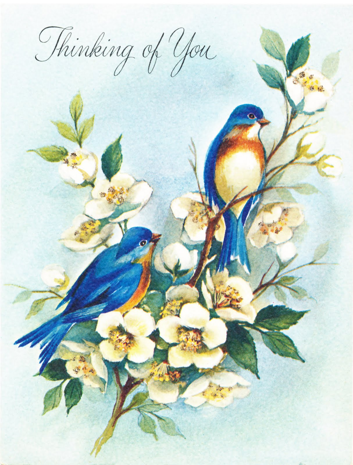Collage Candy: Bird images from vintage greeting cards