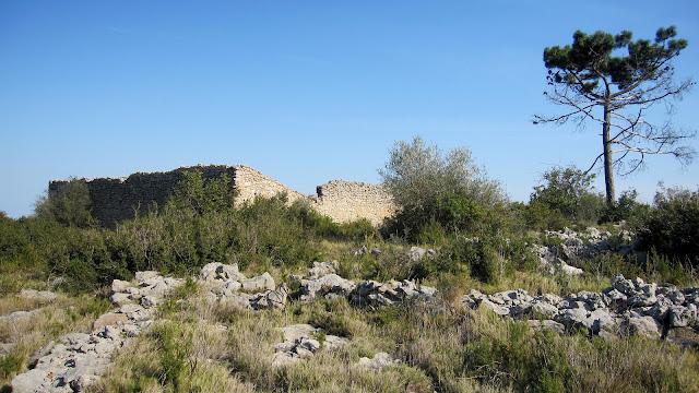 Corral de Foquio, Mondúver