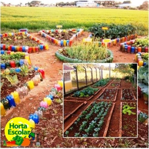 projeto horta e jardim na escolasensibilizar e conscientizar