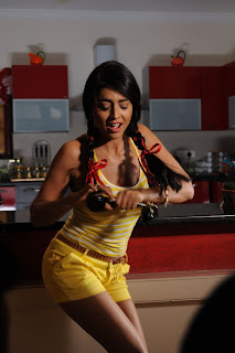 Shriya Saran Latest  Picture Shoot Gallery in Shorts  0011.jpg