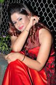 Shilpa Chakravarthy at Appudala Ippudila audio-thumbnail-2