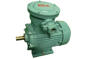 Explosion Proof Motor 3 Phase