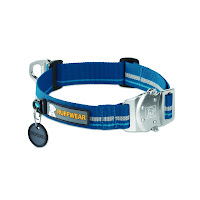 Dog Collars for Outdoor Pursuits
