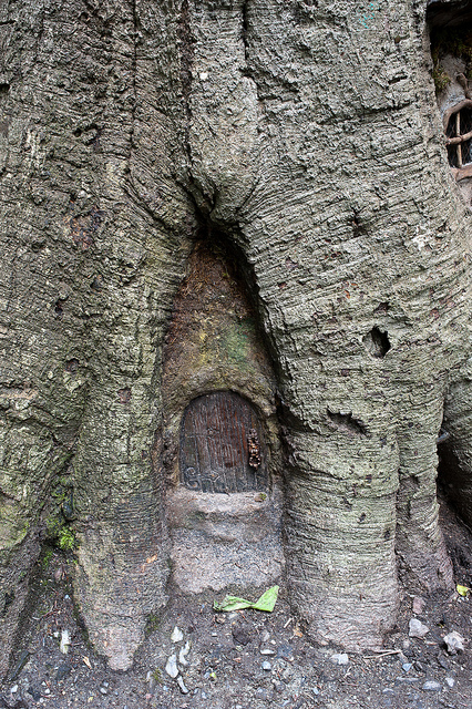 Old european culture fairy tree for Fairy doors for trees