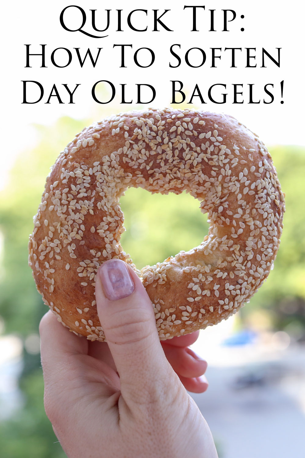 Quick hack for steaming day old, stale bagels at home, using just a sprinkling of water! - Barefeet In The Kitchen
