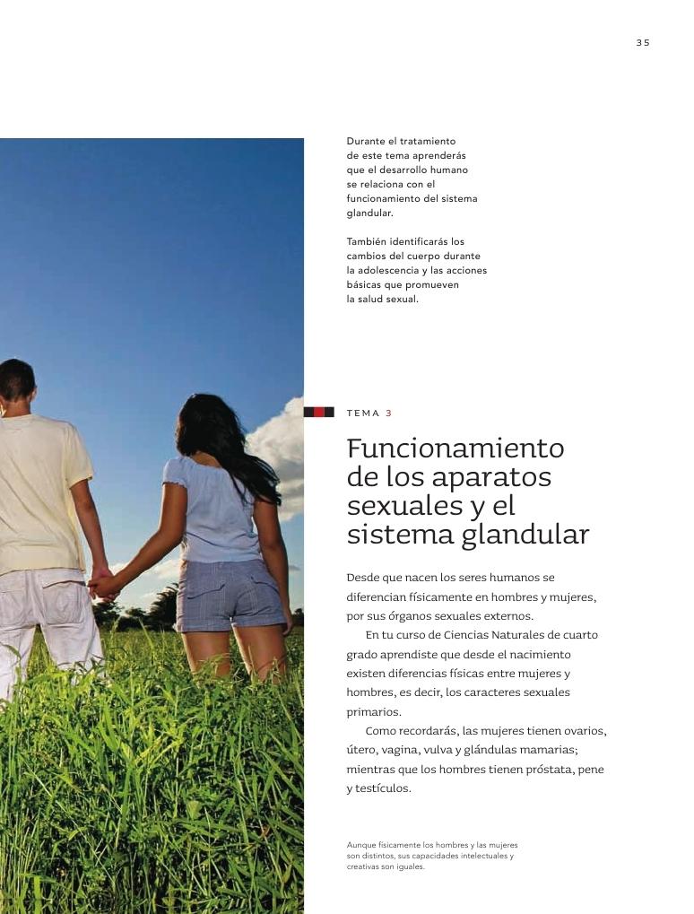 ... sexuales y el sistema glandular - Bloque I - Tema 3 ~ Apoyo Primaria