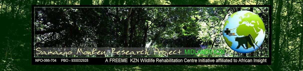 Samango Monkey Research Project - Midlands, KZN