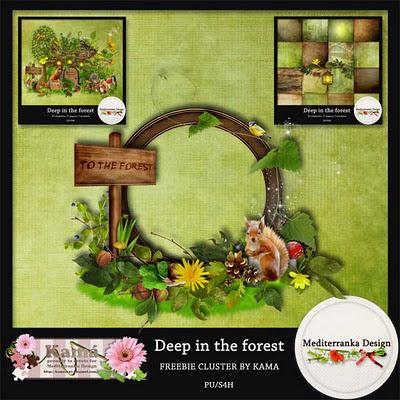 http://4.bp.blogspot.com/-Pfy4y1SyOOM/TpH5wgqah-I/AAAAAAAABPY/udsG7UFCBtQ/s400/Mediterranka_forest_freeclu.jpg